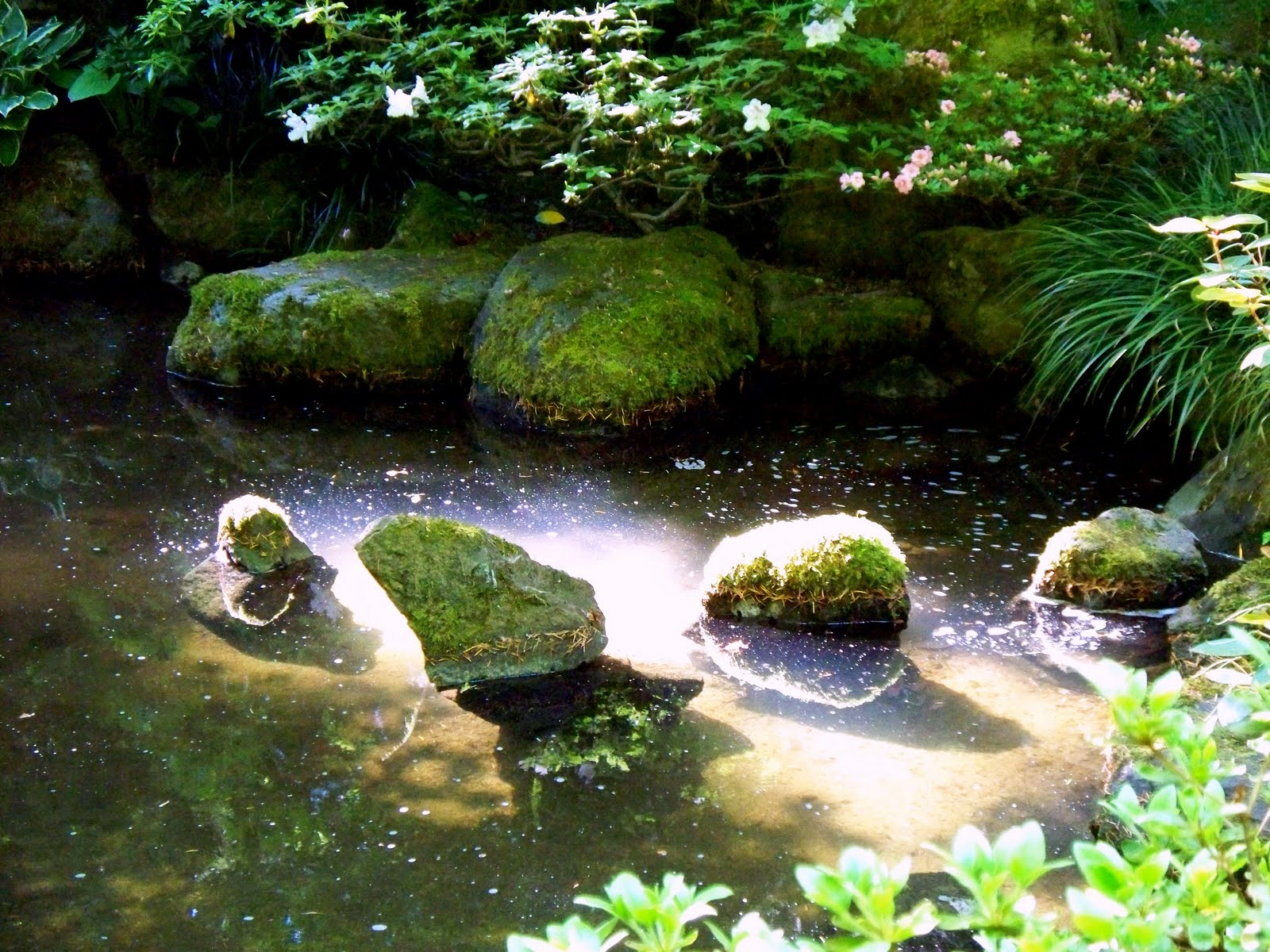 Inside out monday adventure portland japanese garden for Pond pebbles landscape rock