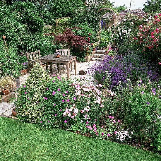 Um jardim para cuidar arbustos floridos para a primavera for Arbustos de jardin fotos