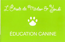 L'Ecole de Medor & Youki - EDUCATION CANINE