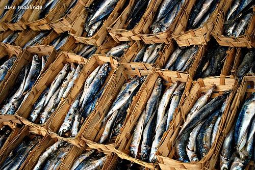 Resep Tumis Ikan Pindang