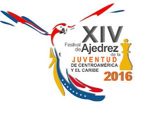 Condiciones Generales del XIV Festival