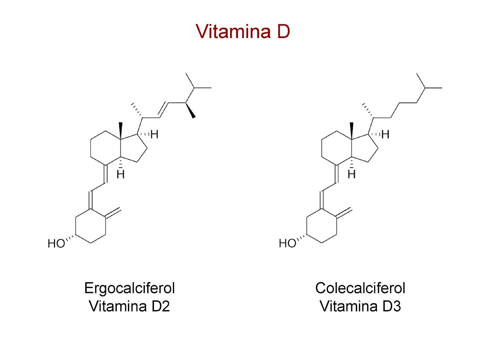 Las dos formas químicas de la vitamina D: ergocalciferol y colecalciferol
