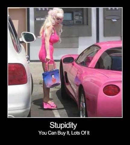 http://4.bp.blogspot.com/-ROd2cGnhHd4/UPWnkh8k_uI/AAAAAAAAJ8s/BfWnyDSB6uM/s1600/stupidity.jpg
