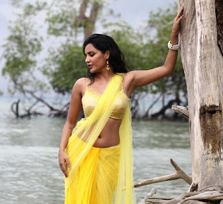 Priya Anand Hot pics in Ethir Neechal Tamil Movie