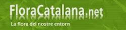 FLORACATALANA.NET