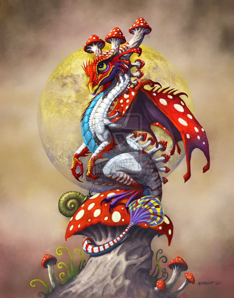 Lovely He has dragons themed to all different kinds of drinks and fruits which is fun but I like this colorful mushroom dragon the best