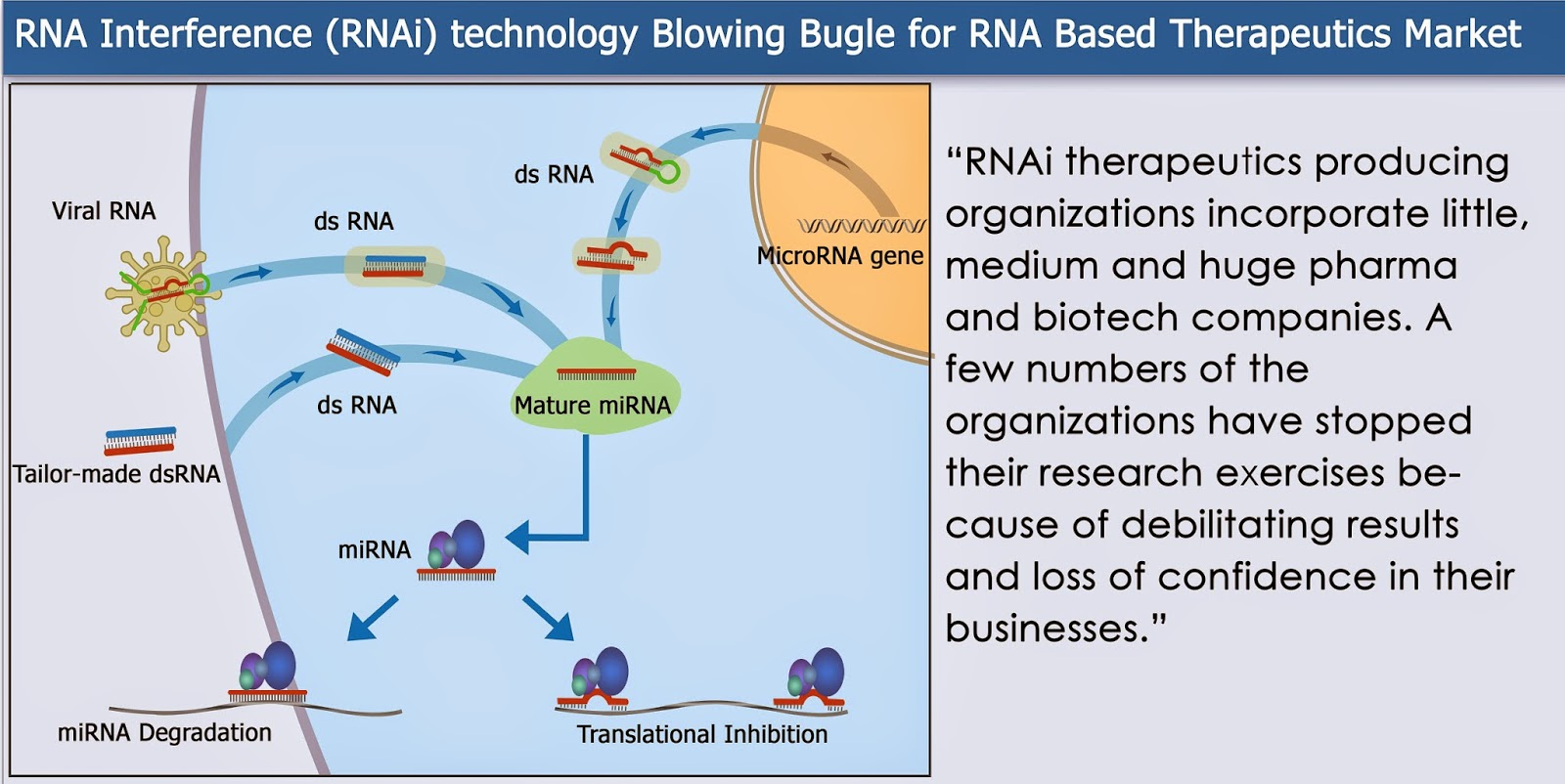 rna based therapeutics With the first mrna-based therapeutics and prophylactic vaccines now in clinical testing, this new class of biologics is poised to transform drug discovery and spearhead the transition to an information-guided drug delivery paradigm.