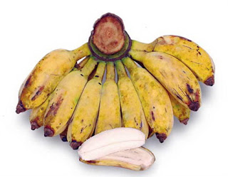 manfaat pisang kepok kuning