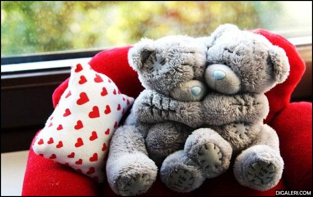Cute Couple Teddy Bear Love