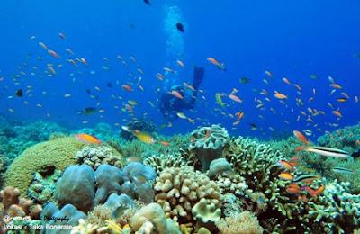 Tempat Wisata di Makassar - Taman Laut Taka Bonerate