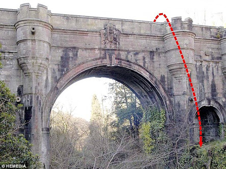 600 Dogs Jumped From A Haunted Suicide Bridge
