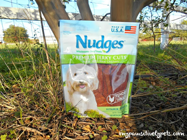 Safe Chicken Jerky Chews for Dogs #NudgesMoments