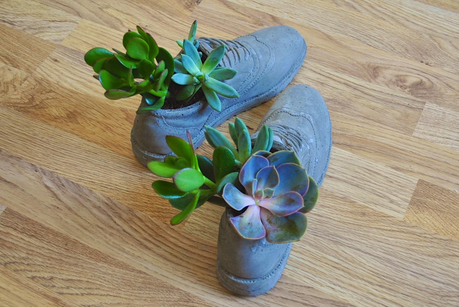 Concrete brogue plant pots