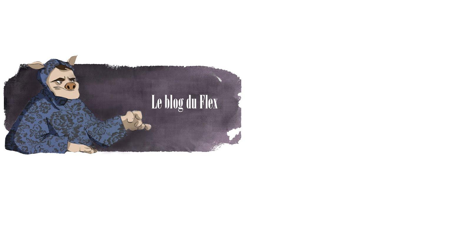 Le blog du Flex