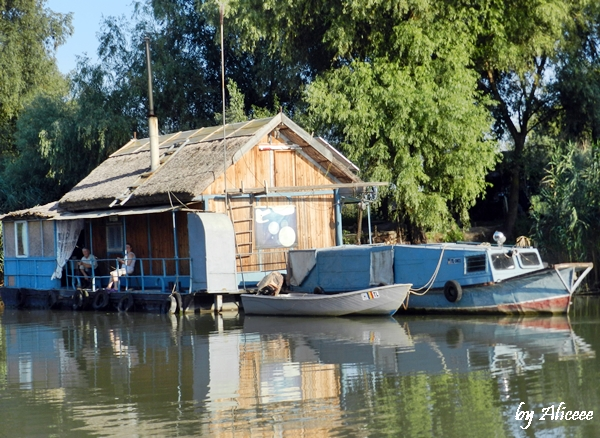 case-plutitoare-in-delta-dunarii