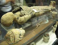 momia en museo