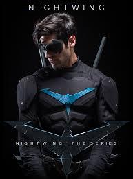 Assistir Nightwing The Series 1 Temporada Dublado e Legendado Online
