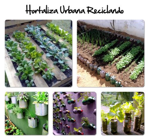 Soy la mam de nico febrero 2013 for Como cultivar hortalizas