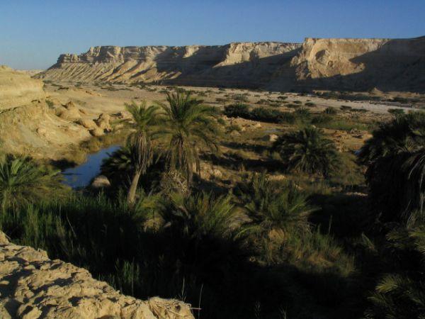 Oasis Oman