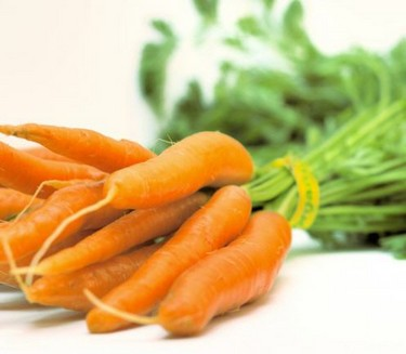 Site Carrots facial use Mikhins
