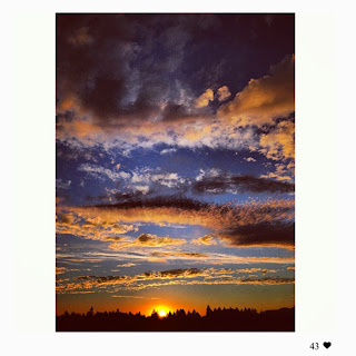 © Carolyn Corley Burgess - Napa Valley Photographer