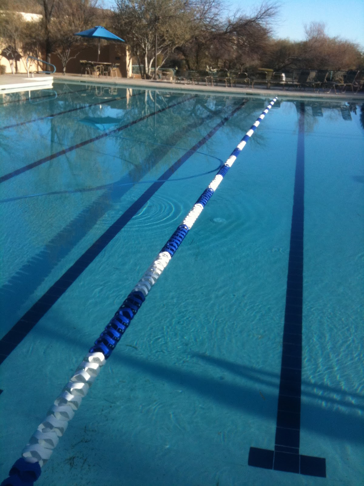 swimming pool lane lines background. The One Lane-line Pool Swimming Lane Lines Background S