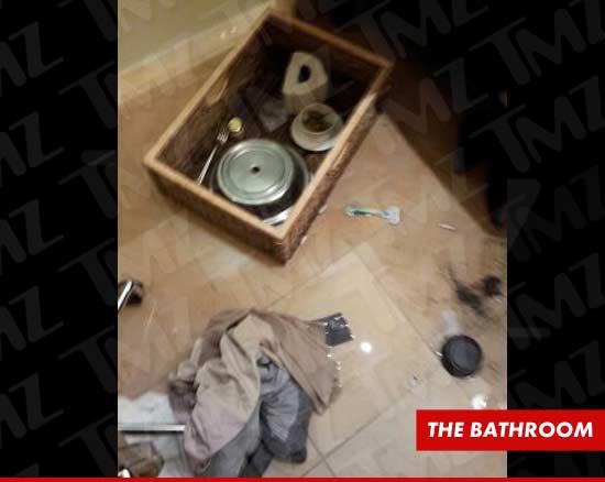 hollywood whitney houston death bathtub drugs rehab