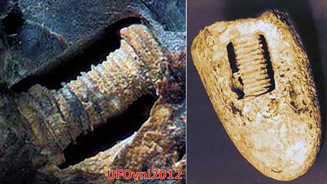 Les vis 300 millions d'années en pierre intégrés