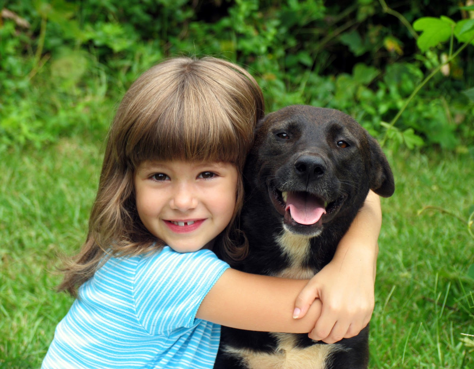 A Dog's Life: Kids and Dogs