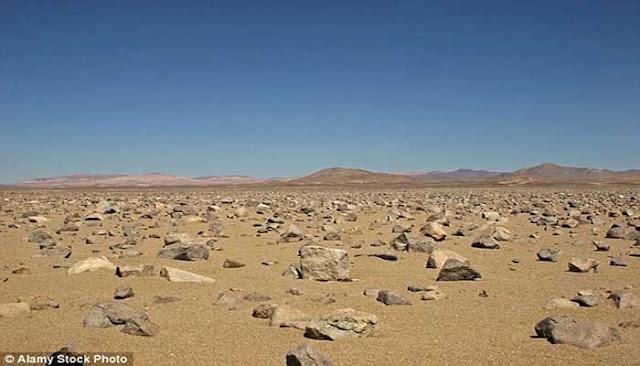 بالصور.. هذا ما يحدث عندما تمطر في الصحراء الأكثر جفافا في العالم!