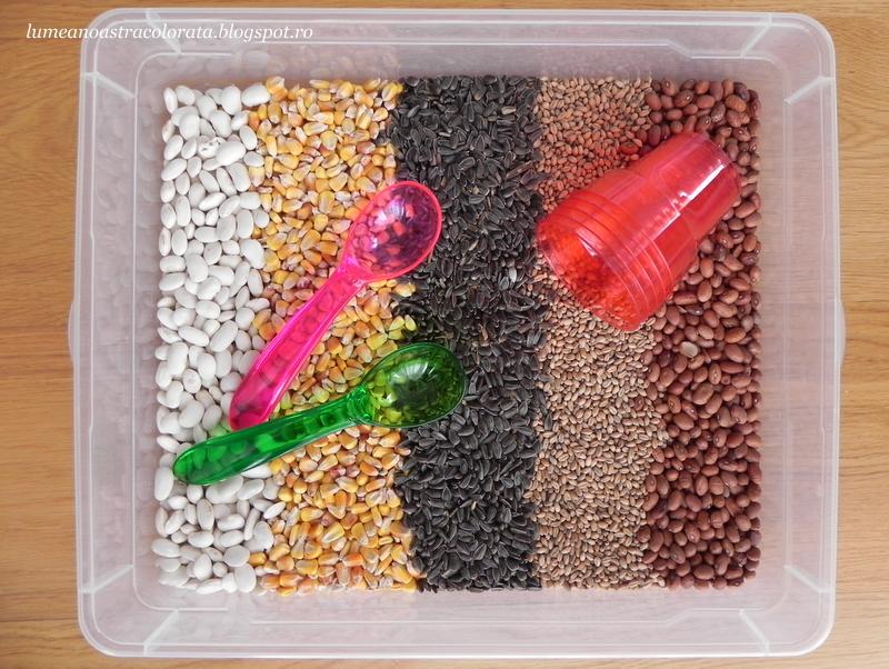 Cutie senzorială cu semințe de Toamnă