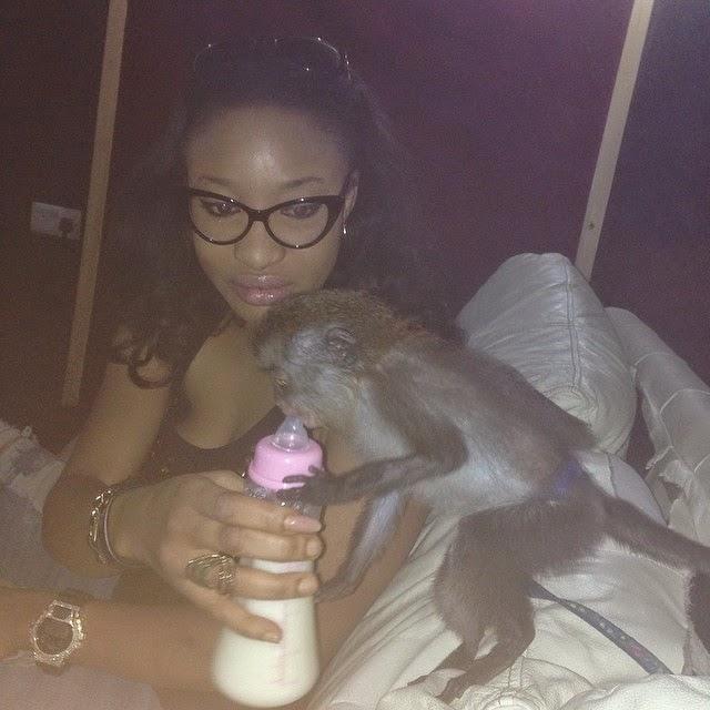 tonto dikeh monkey ebola
