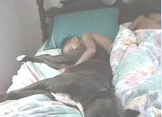 funny picture: child sleeps with dog