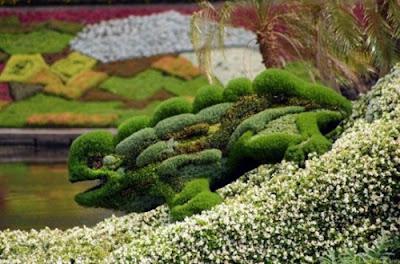 grass made lizard photo