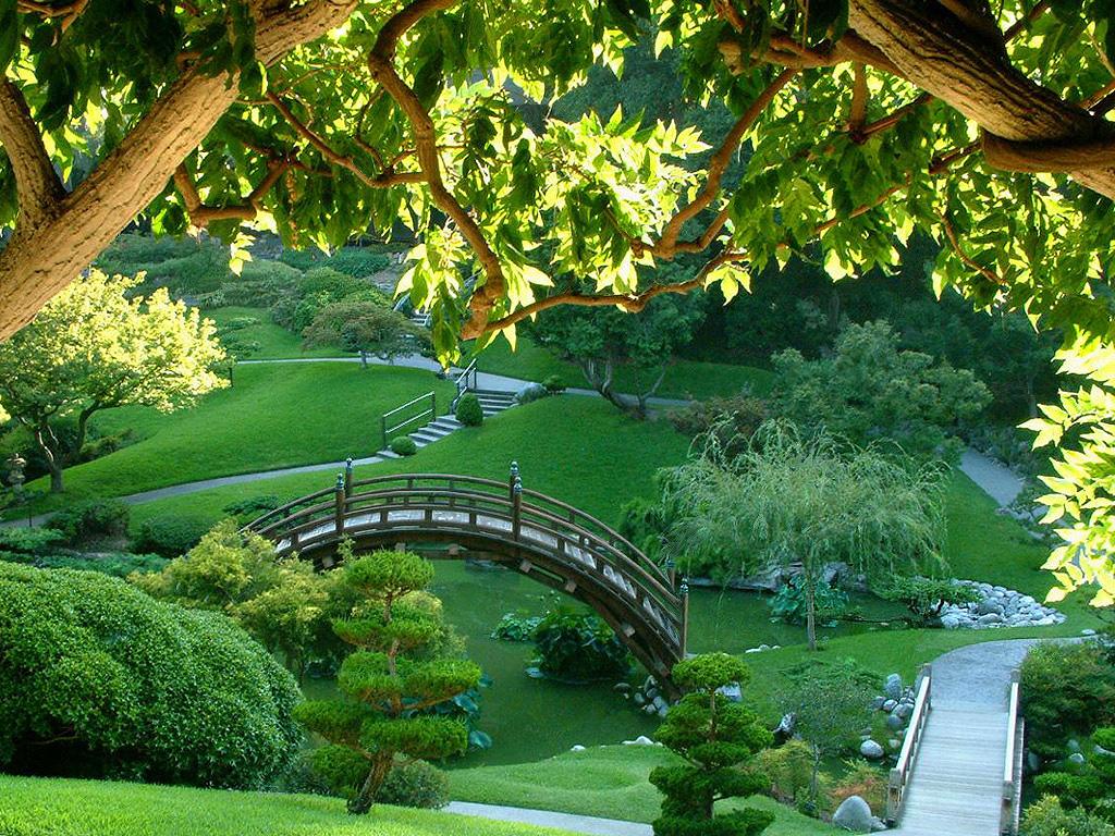 http://4.bp.blogspot.com/-RSNnoF04NVE/Tpb2DvghckI/AAAAAAAAB7k/wDiYzJq3AZc/s1600/jardin-japones1.jpg