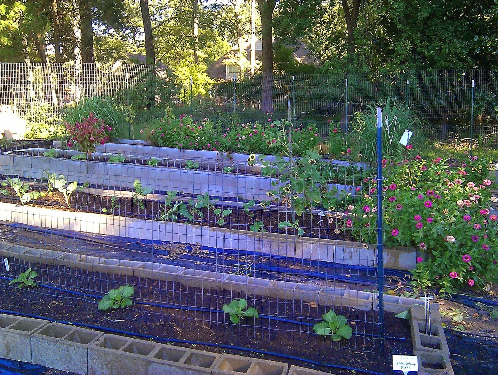 Memphis Area Master Gardeners