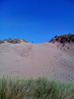 image of sand dune