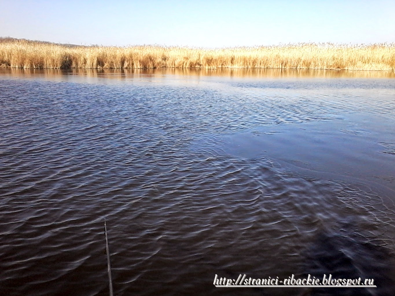 рыбалка на Белой