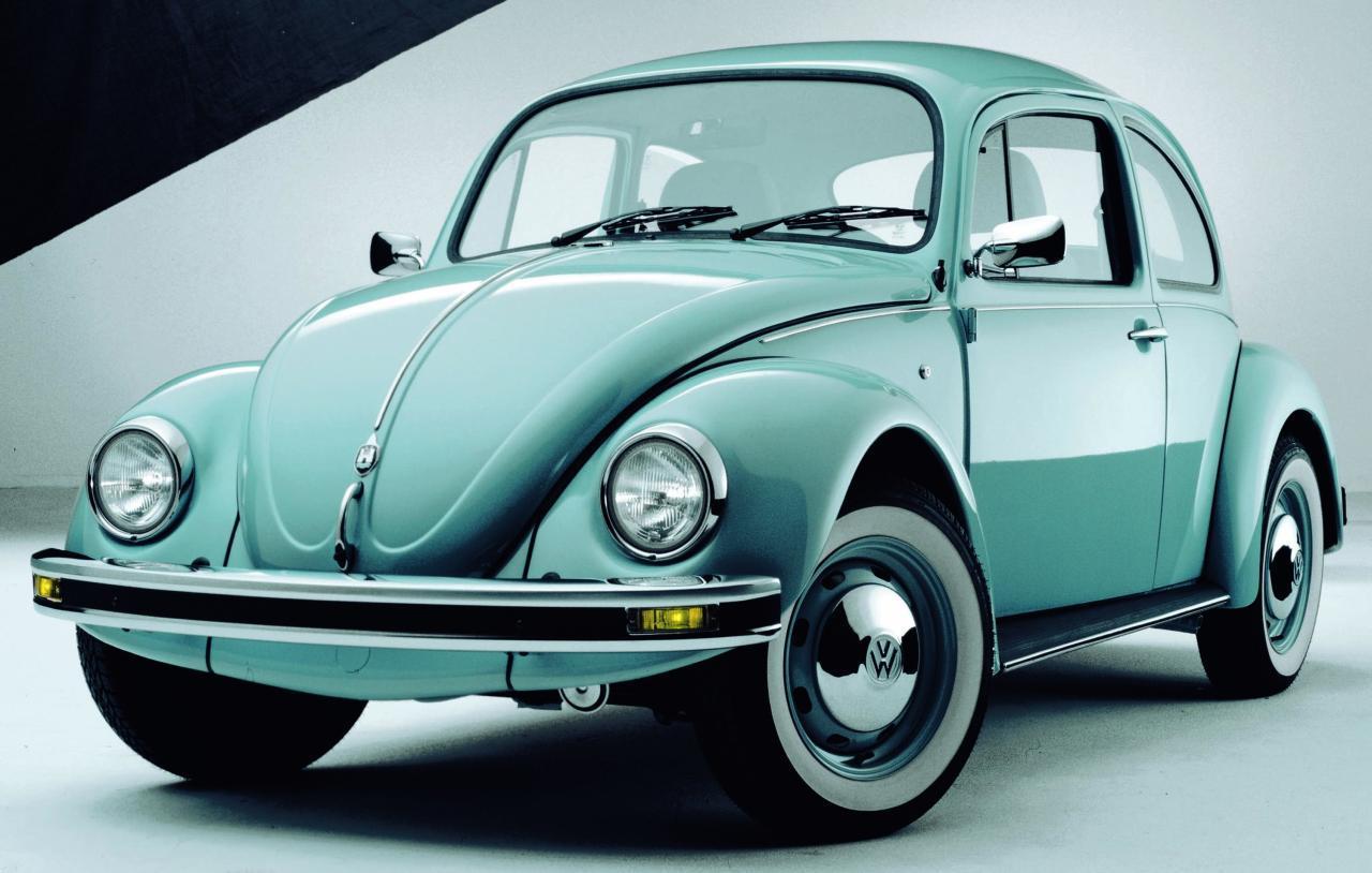 Bug Volkswagen VW Beetle