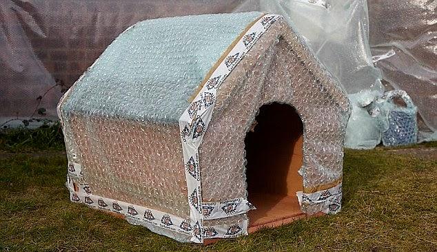 El surtidor de empaques tel 81 83982888 empaque y for Aislar paredes del frio