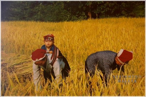 Supermeng Malaya  Highlight Sapa  Vietnam