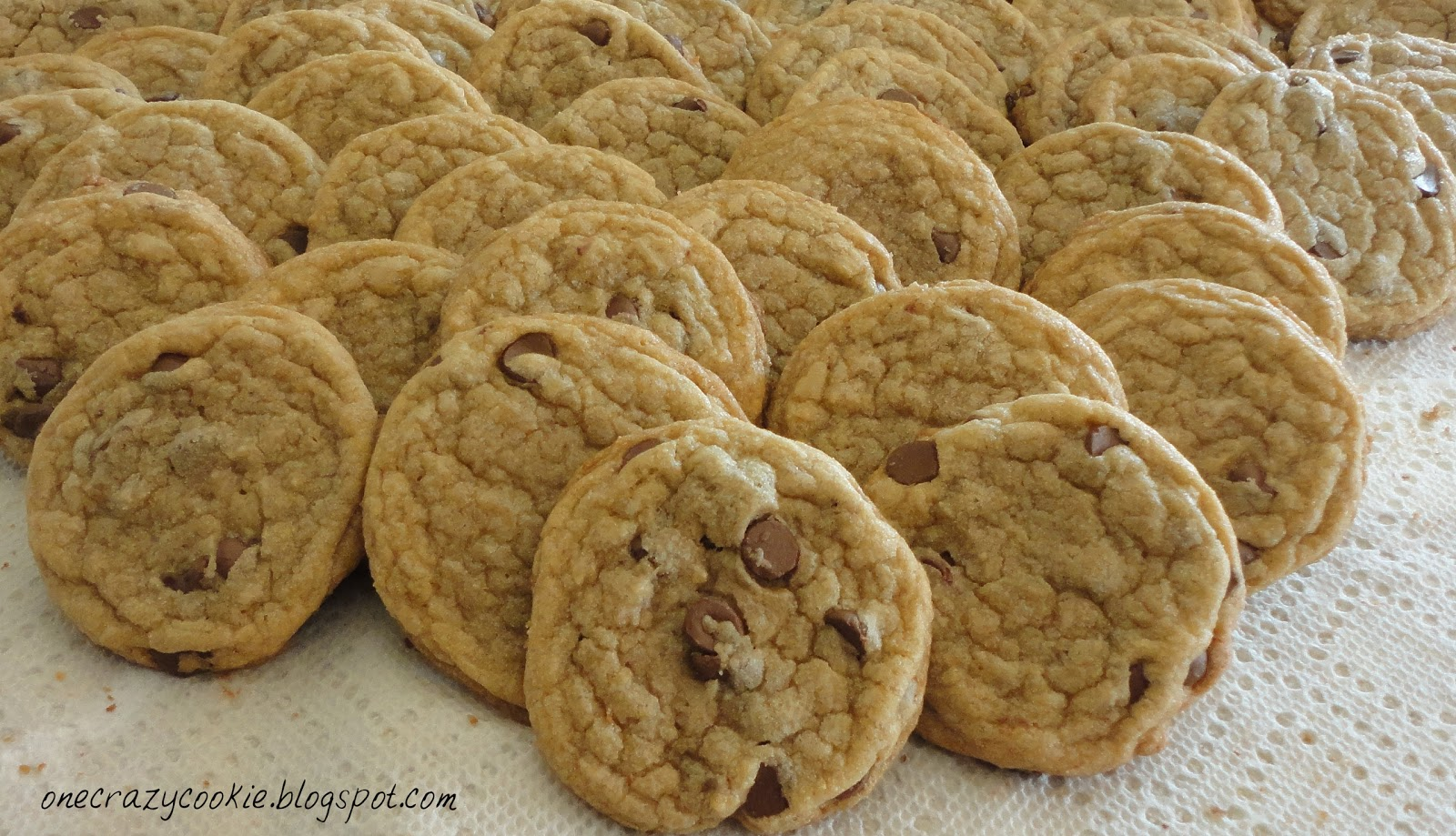One Crazy Cookie: Bakery Style Chewy Chocolate Chip Cookies