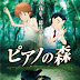 [Recomendación Anime] El piano en el bosque
