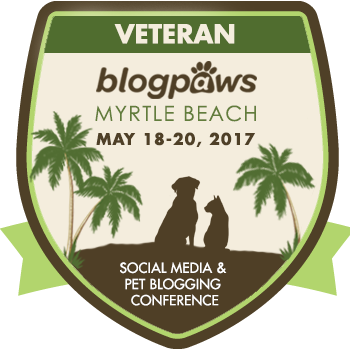 MEET COCO AT BLOGPAWS!