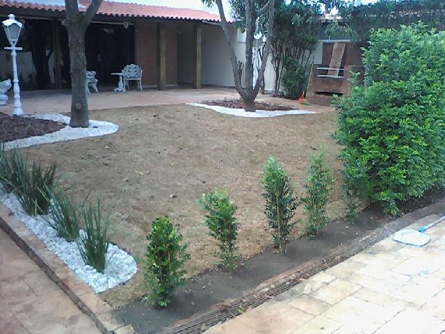 seixos para jardim em sorocaba plantadas para repor uma cerca viva