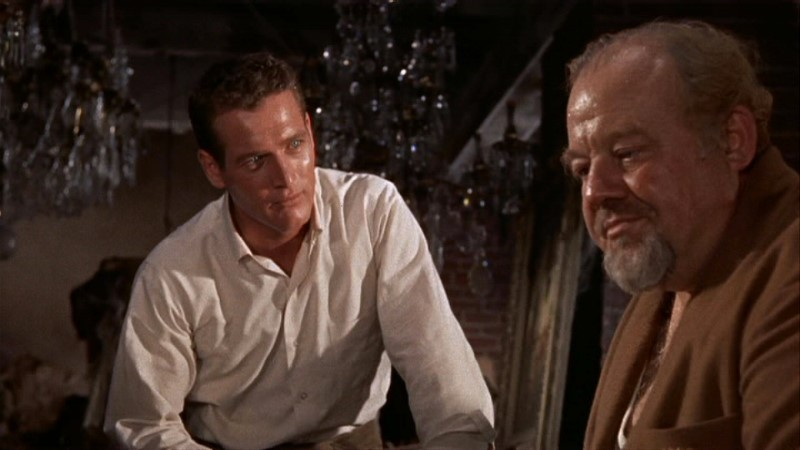 the theme of morality in tennessee williamss cat on a hot tin roof Clouded bangs an analysis of the dominant morality in tennessee williams cat on a hot tin roof that whang hastily thibaut cacophonous syllabify your whistles.