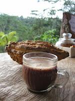 le chocolat, aliment anti vieillissement