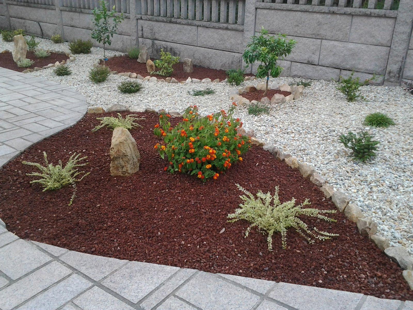 Xardineria magnolio jardines de bajo mantenimiento for Mantenimiento de jardines