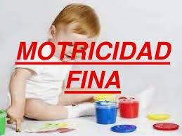 http://es.slideshare.net/soniambr75/actividades-para-desarrollar-la-motricidad-finaactividades-paradesarrollarlamotricidadfina