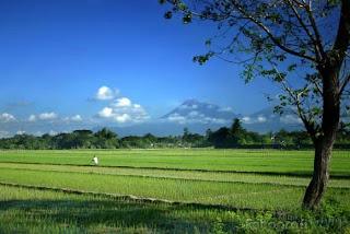 Lirik dan Chord Lagu Daerah Jawa Tengah Lir Ilir Image